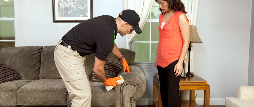 Newark, CA carpet upholstery cleaning
