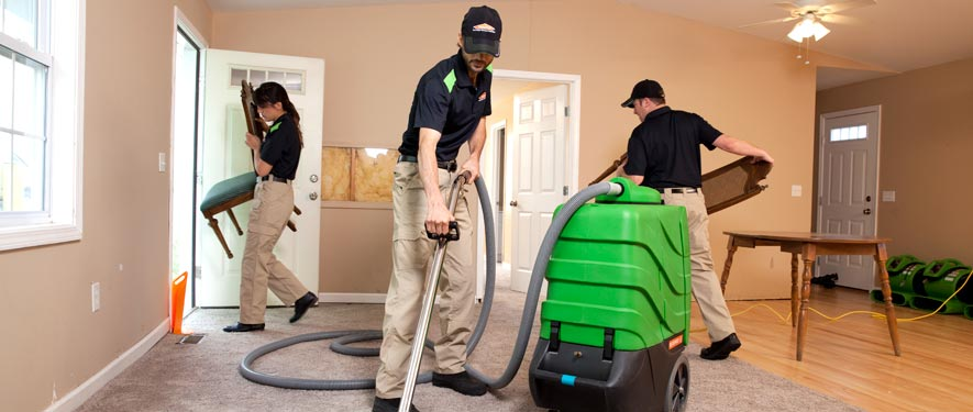 Newark, CA cleaning services